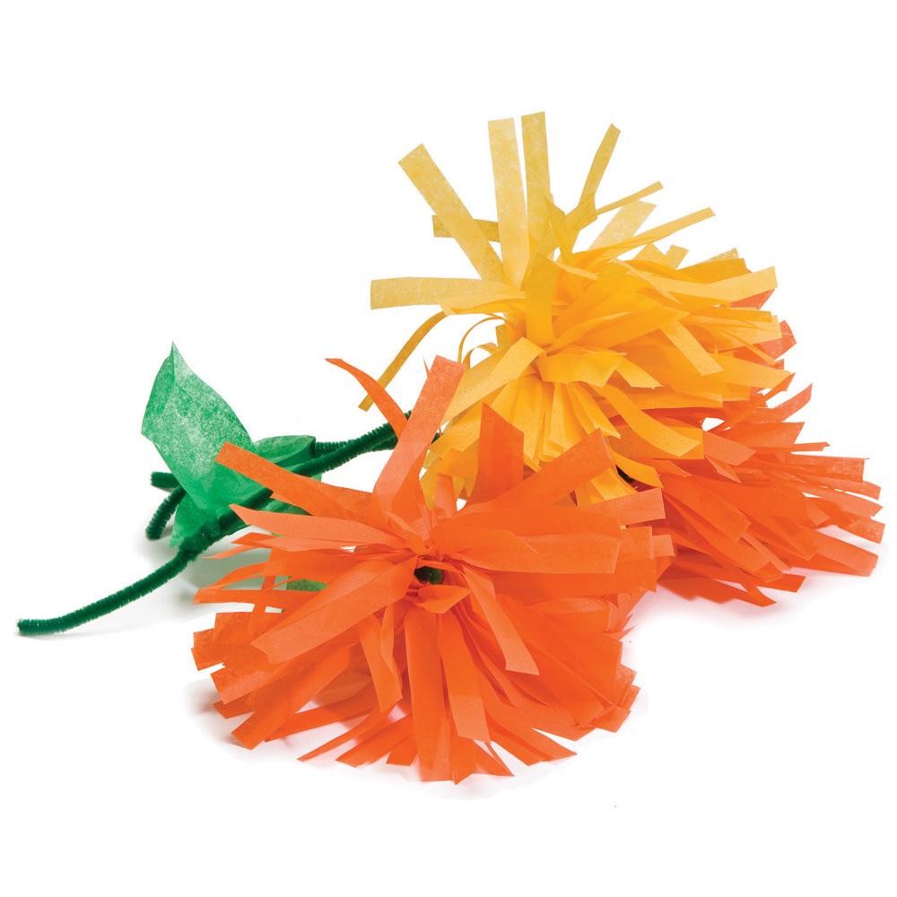 Marigold Flower Spanish Kit