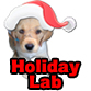 Holiday Lab