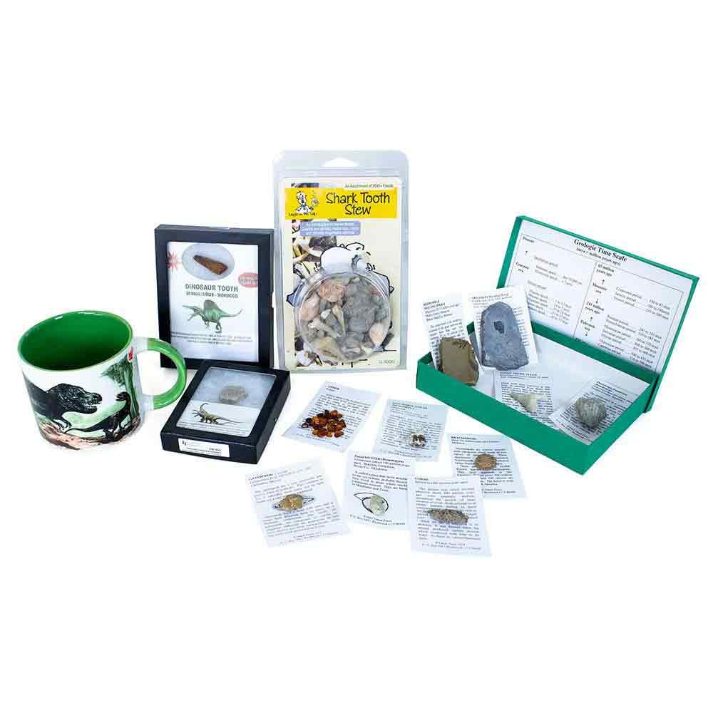 Dinos & Fossils Bundle