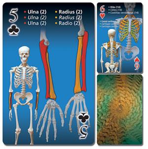 Bone Playing Cards