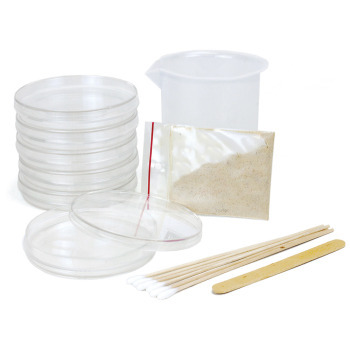 Bacteria Growing Kits - Bacteria Growing Kit-Classroom