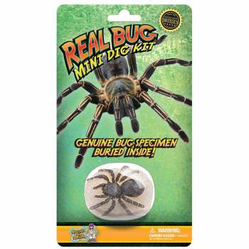 Real Bug Mini Dig Kit