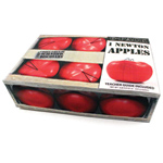 Newton's Apple Set of 6 with Booklet