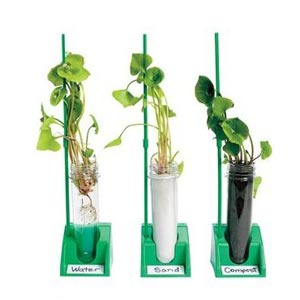 Hydroponic Plant Lab