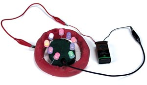 The Electri-Putty Kit