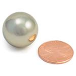 Large Neodymium Sphere 0.75 in. Dia. (1.9 cm)