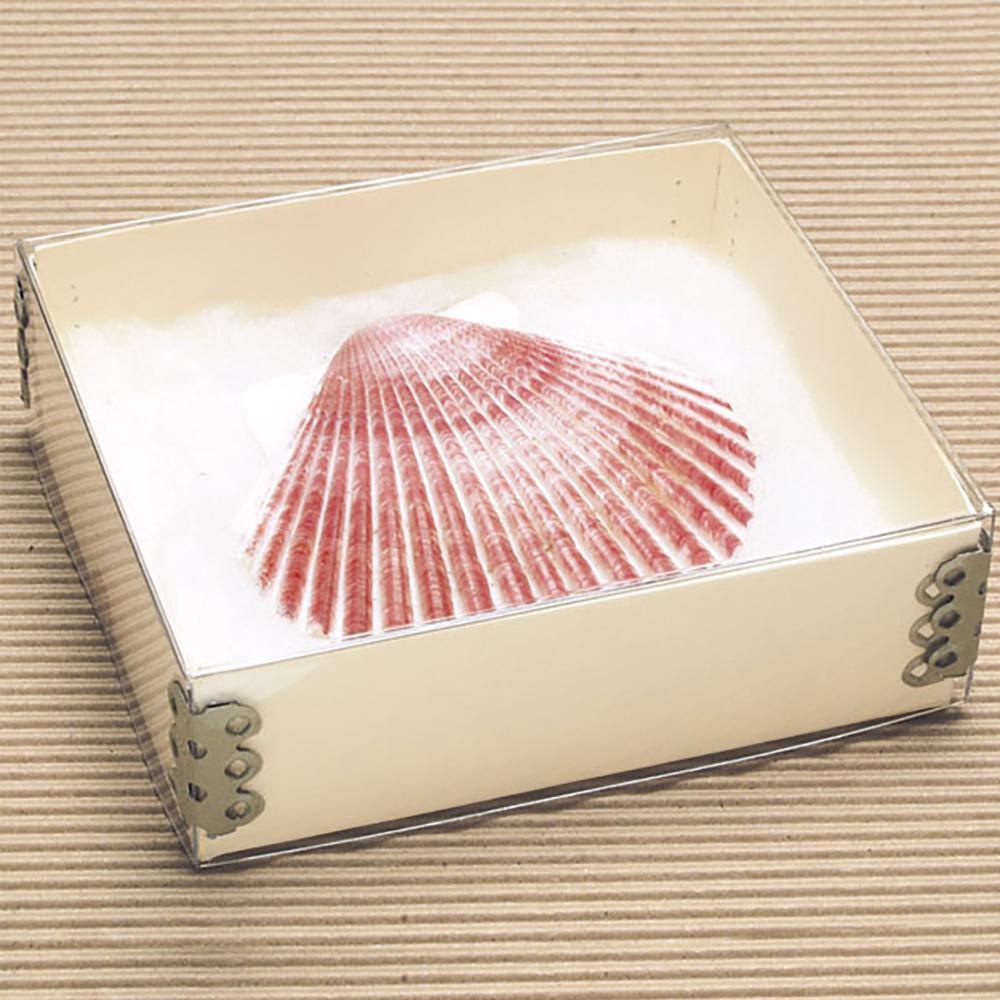 Top View Artifact Boxes