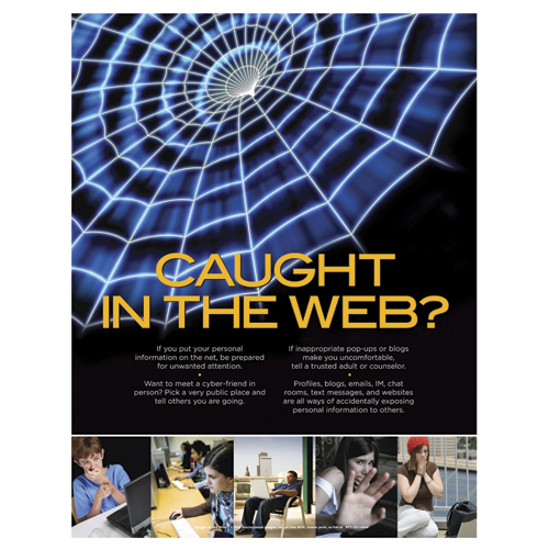 Caught In The Web? Laminated Poster - CLEARANCE Save 57%
