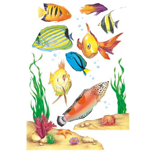 Fish Window Clings
