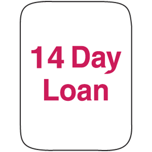 Classification Labels - 14 Day Loan, 250/Roll