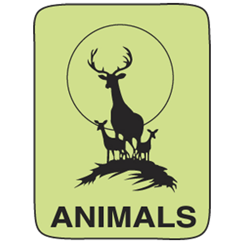 Classification Labels - Animals, 250/Roll