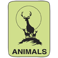 Animal Classification Labels