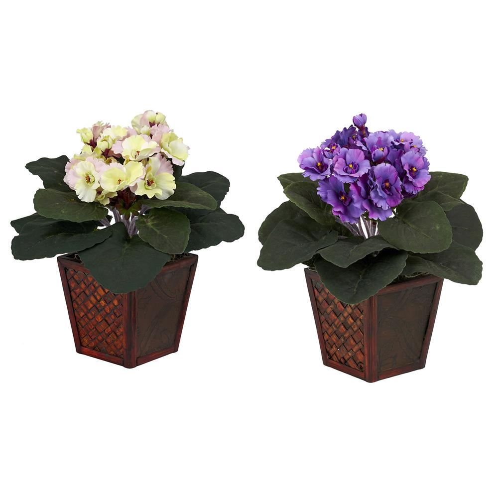 African Violets with Vase - Set of 2