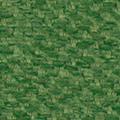 Avocado Green - CW51