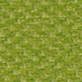 Jade Green - CW50