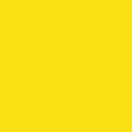 Leather , Canola Yellow