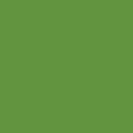 Fern Green - K052