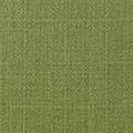 Kashmir Green