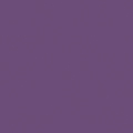 Shell , Purple