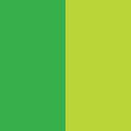 Green/Light Green