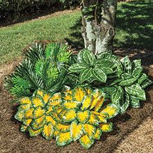 All-Weather Forever Plants - Caladium
