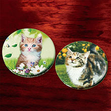Cute Kitty Compacts