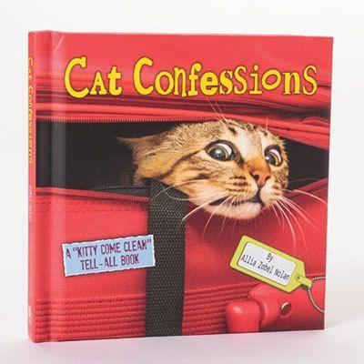 Cat Confessions Book