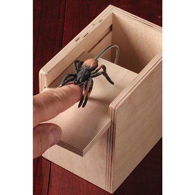 Jumpin' Spider Surprise