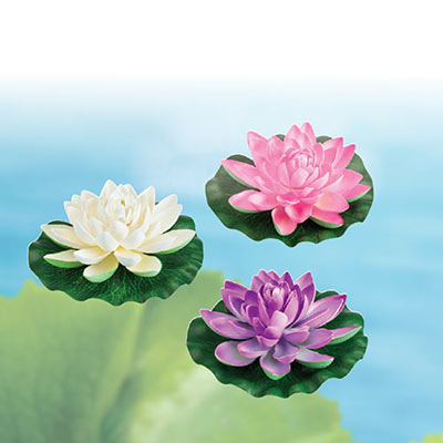 All-Weather Forever Water Lilies