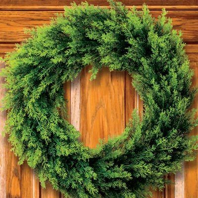 Woodland Fern Wreath