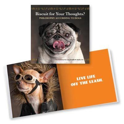 Biscuit for Your Thoughts Book