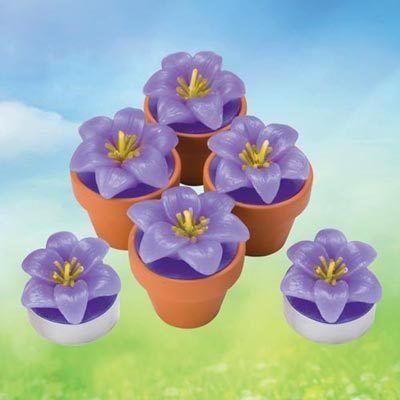 Violet Tealights