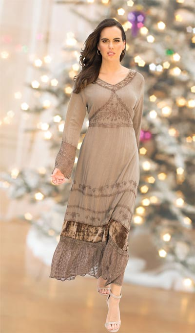 Victorian Velvet Trimmed Dress