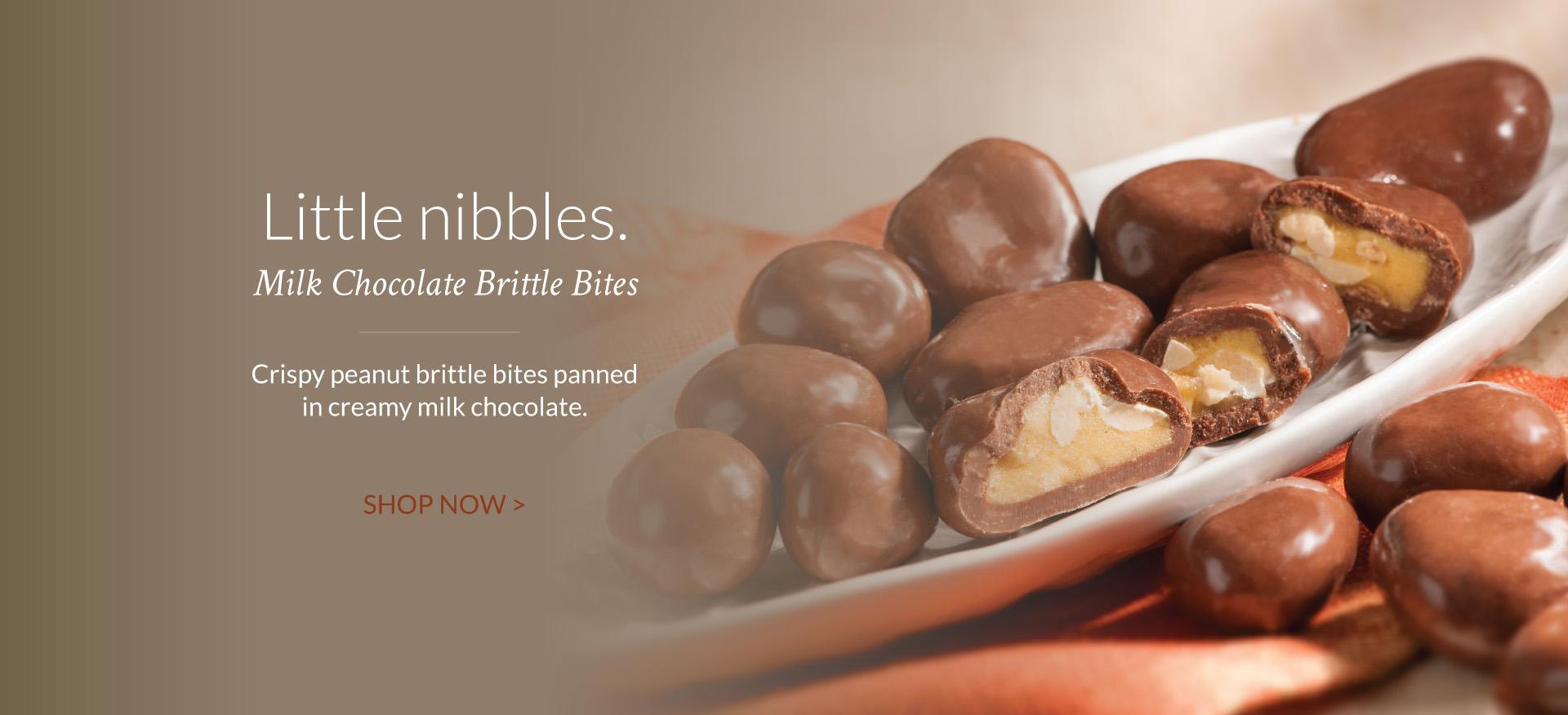 Milk Chocolate Brittle Bites - The Peanut Shop of Williamsburg