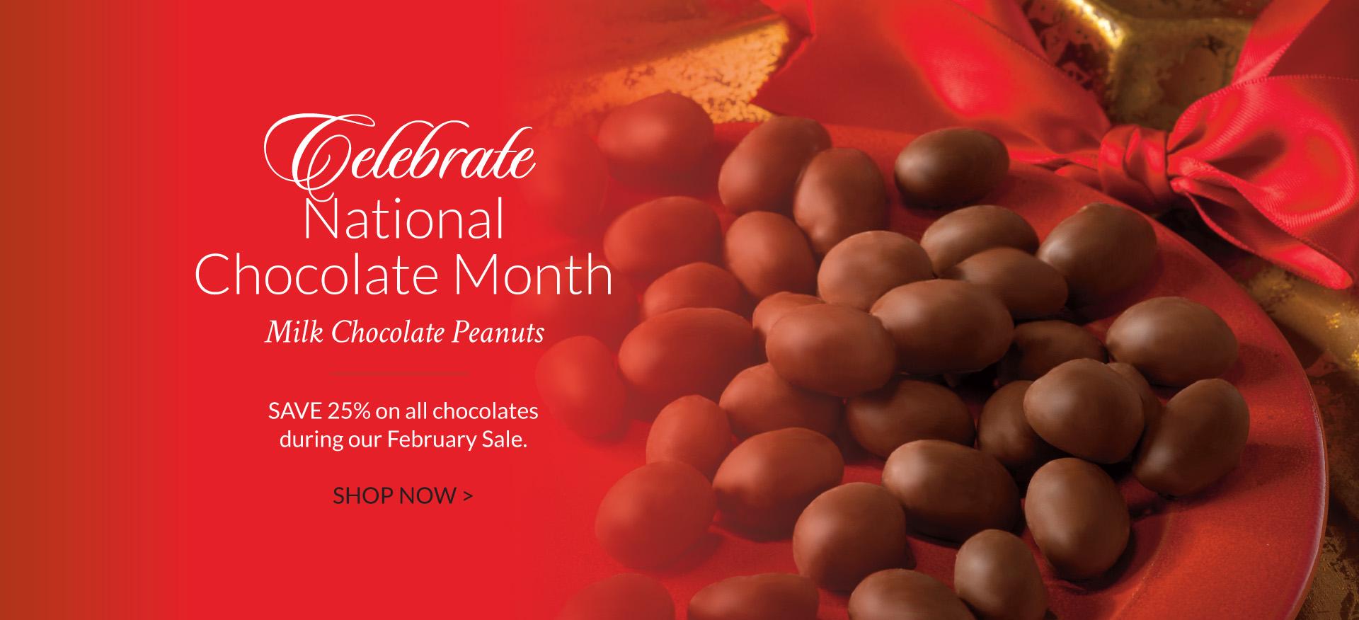 Chocolate Peanuts - The Peanut Shop of Williamsburg