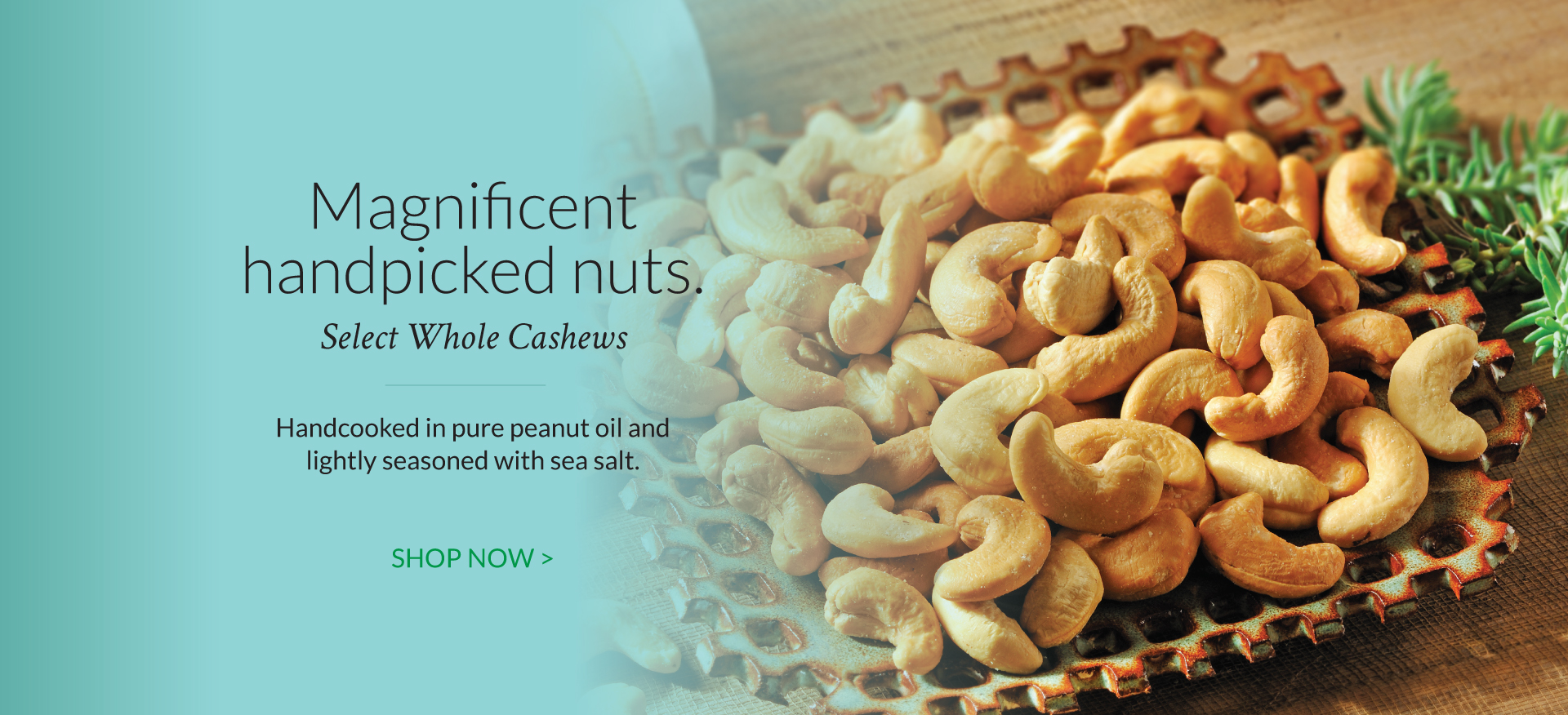 Cashews - The Peanut Shop of Williamsburg