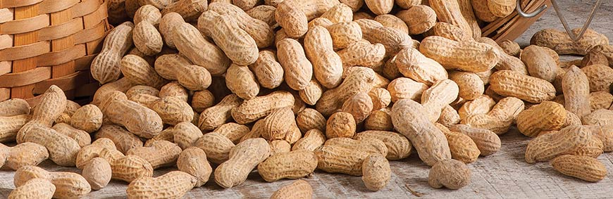 In-the-Shell Peanuts
