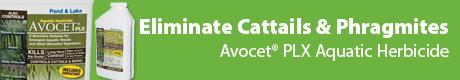 Avocet PLX - Eliminate Cattails & Phragmites