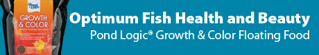 Pond Logic Growth & Color Fish Food - Optimum Fish Health & Beauty