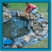 Should I build a pond or a waterfall feature? Which is better?