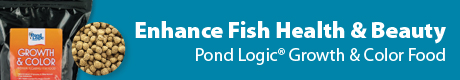 Pond Logic Growth & Color Fish Food - Enhance Fish Health & Beauty