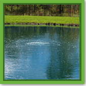 I want to install aeration. Which system do I buy for my pond?