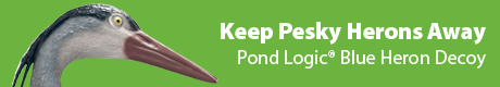 Pond Logic® Blue Heron Decoy - Keep Pesky Herons Away