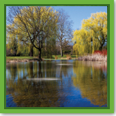 : Is it too cold to treat my pond with the ClearPAC® PLUS?