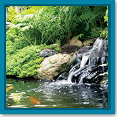Q: My fish hang out near my waterfall during hot days. Do I have enough aeration in my pond?