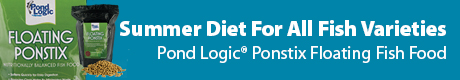 Daily Summer Diet For All Fish Varieties - View Pond Logic® Ponstix Floating Fish Food