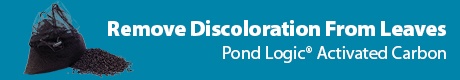 Remove Discoloration From Leaves & Debris - View Pond Logic® Activated Carbon