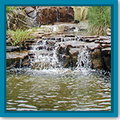 Q: My pond is mostly clean but should I do a fall cleanout?