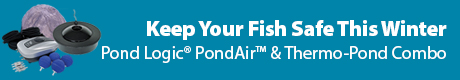 Keep Your Fish Safe This Winter - Airmax® PondAir™ and Thermo-Pond Combos