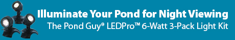 Illuminate Your Pond for Night Viewing - The Pond Guy(r) LEDPro(tm) 6-Watt 3-Pack Light Kit